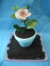 Flower Pot with Rose cake